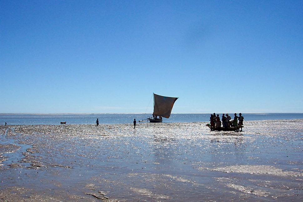 Paisaje de Madagascar - Foto P. Zdzislaw