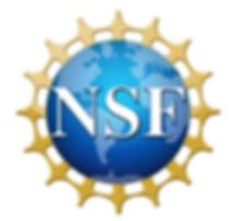NSF Main sponsor.jpg