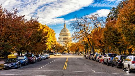 Fall in DC