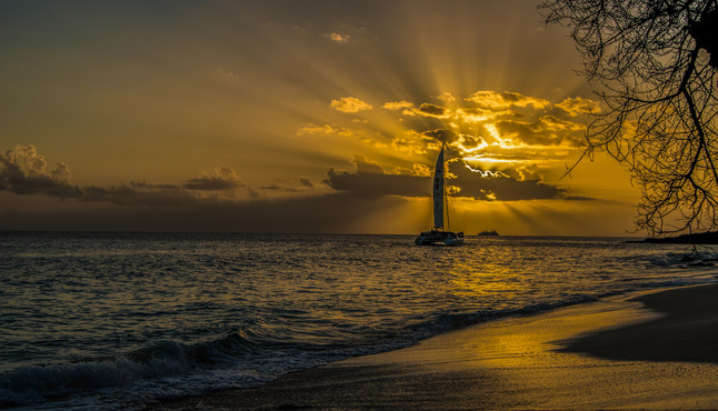 Sailing Sunsets