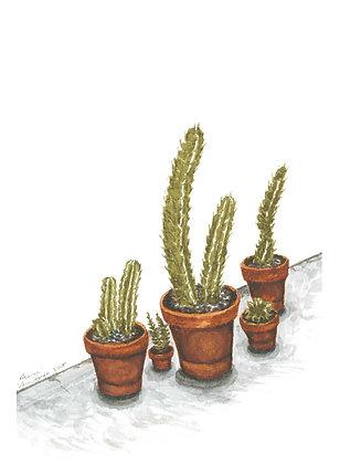 The Cacti - Print