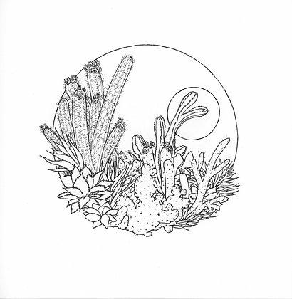 Desert Cacti - Print