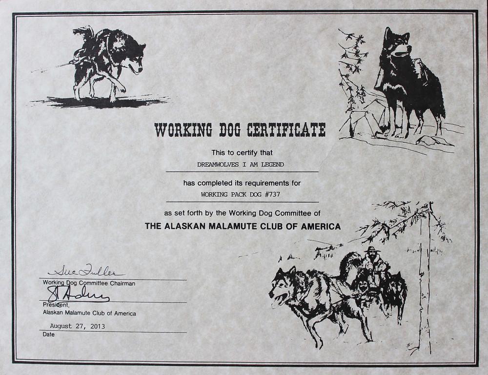 BlackSummit Alaskan Malamutes
