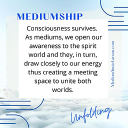 Consciousness Survives.jpg