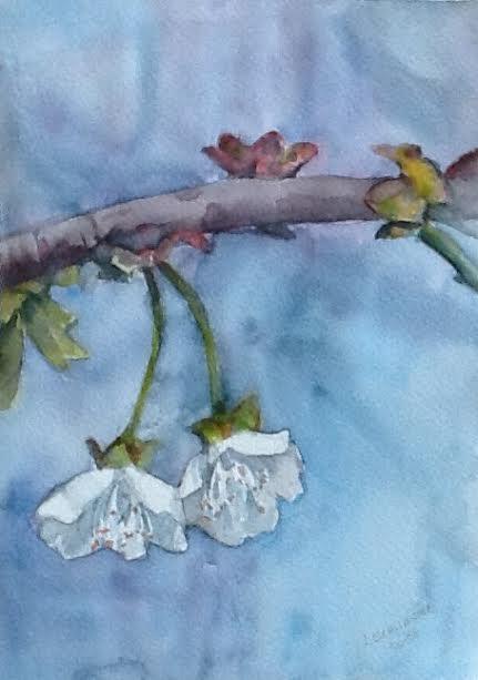Schnaider, Judith. Membrillo en flor