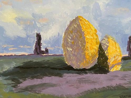 """""""Homenaje a Vincent"""" by Sebastian Penas"""