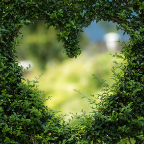 Swaddling Love