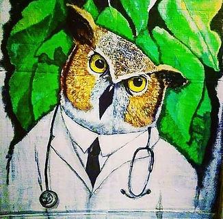 owl medicine.jpg