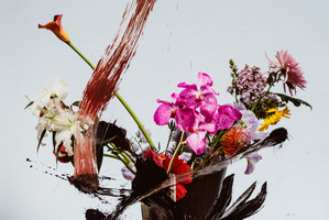 Flowers_Layers2498.jpg
