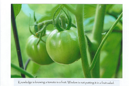 Knowledge is knowing tomato is a fruit. Wisdom is not putting it in fruit salad.