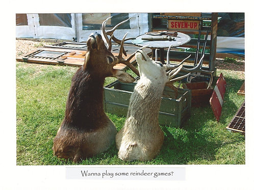 Wanna play some reindeer games?