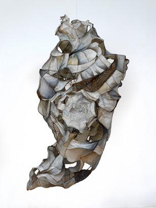 Weathered Shell