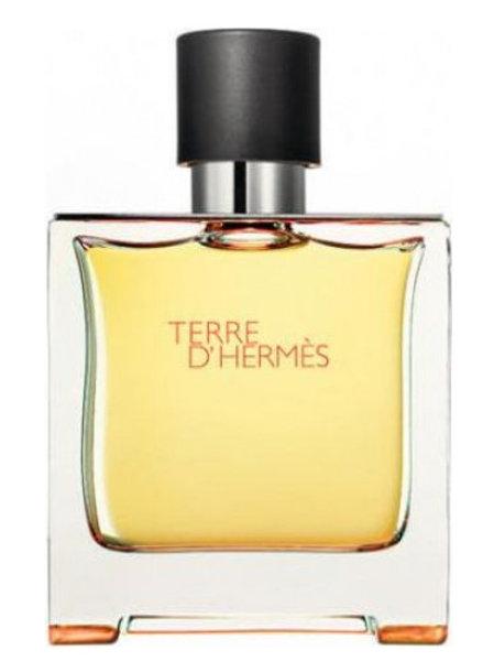 Terre d'Hermès PURE PARFUM Parfum 75 ml