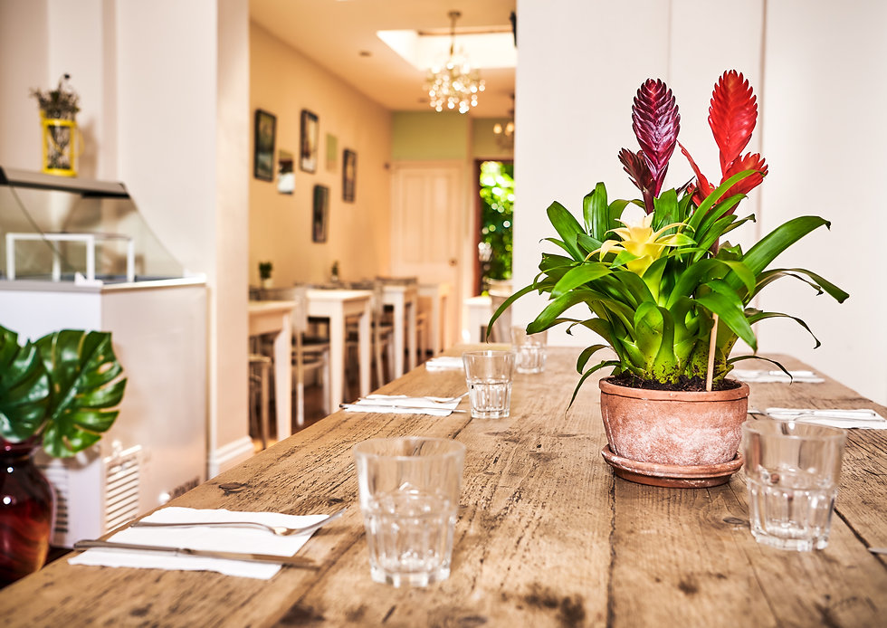 inside Laras restaurant finsbury park