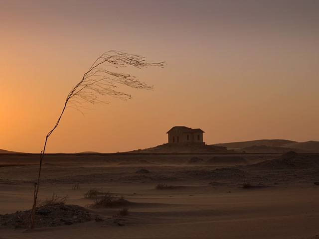 stressed deserts