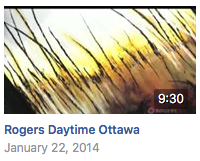 Guest appearance on Rogers Daytime Ottawa tv show.