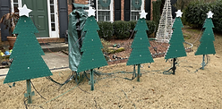 Coro Trees in our 2020 Show