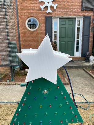 Coro Tree | STAR