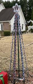 Strip Tree in the Yard