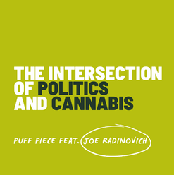 intersection of politics and cannabis.pn