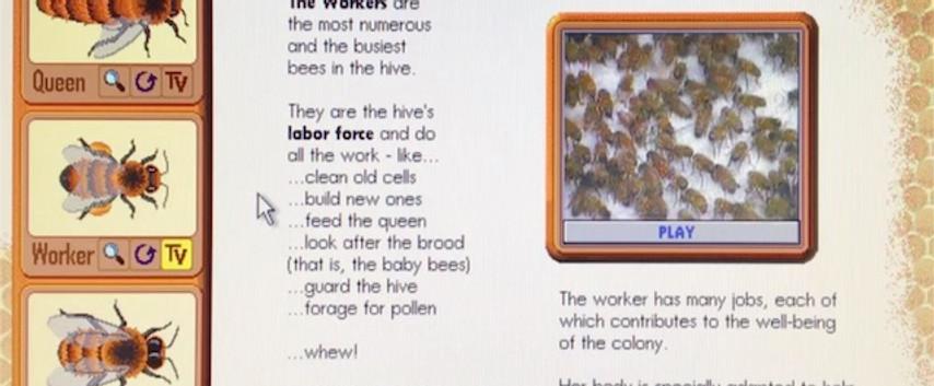 Why do bees make honey? Vol 1.