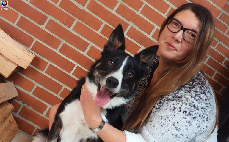 Conseils d'éducation canine et féline