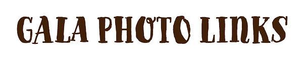 galaphotolinks.jpg