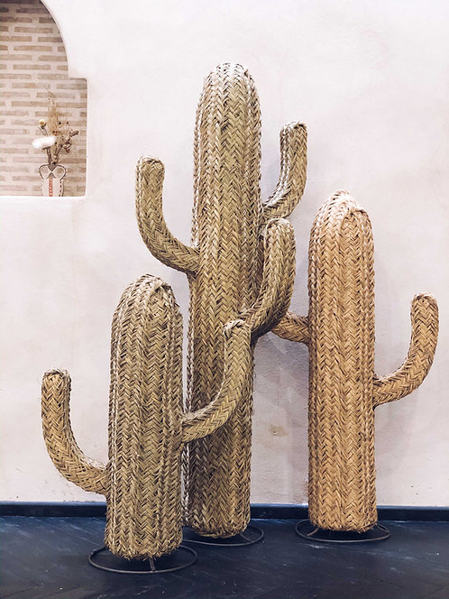 Straw Cacti