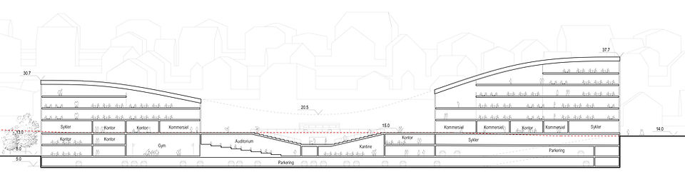 Section longitudinal.jpg