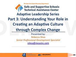 Part 3 Adaptive Leadership.jpg