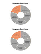 Competency Expert Group Pies-Half page c