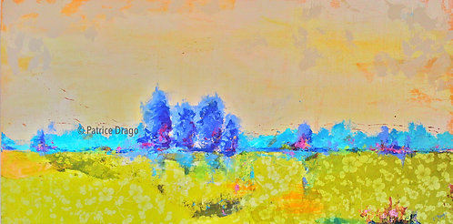 """Clearing, 48"""" x 24"""""""