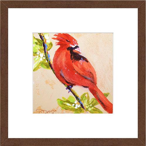 Cardinal Indeed - framed print