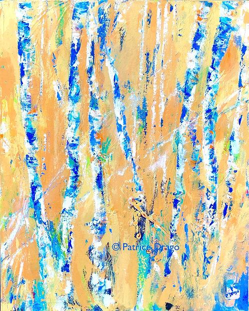 """Birches in Sunlight, 24"""" x 30"""""""