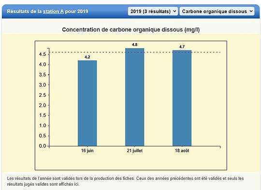 2019 Carbone.JPG