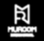 MR國際_logo-01.png