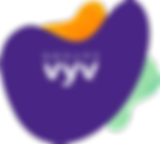 Logo-VYV.png
