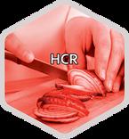 HEXAGONE HCR WEB.png