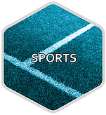 HEXAGONE SPORT WEB.png