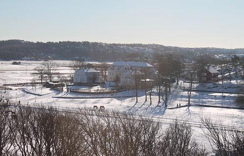 Tofta vinter Svanelund med dammen.JPG