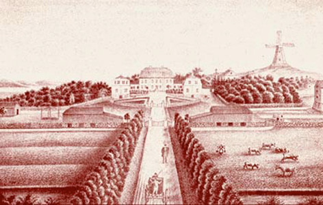 tecknad bild 1800-tal.jpg