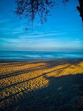 Talpona beach, South Goa, Goa, India
