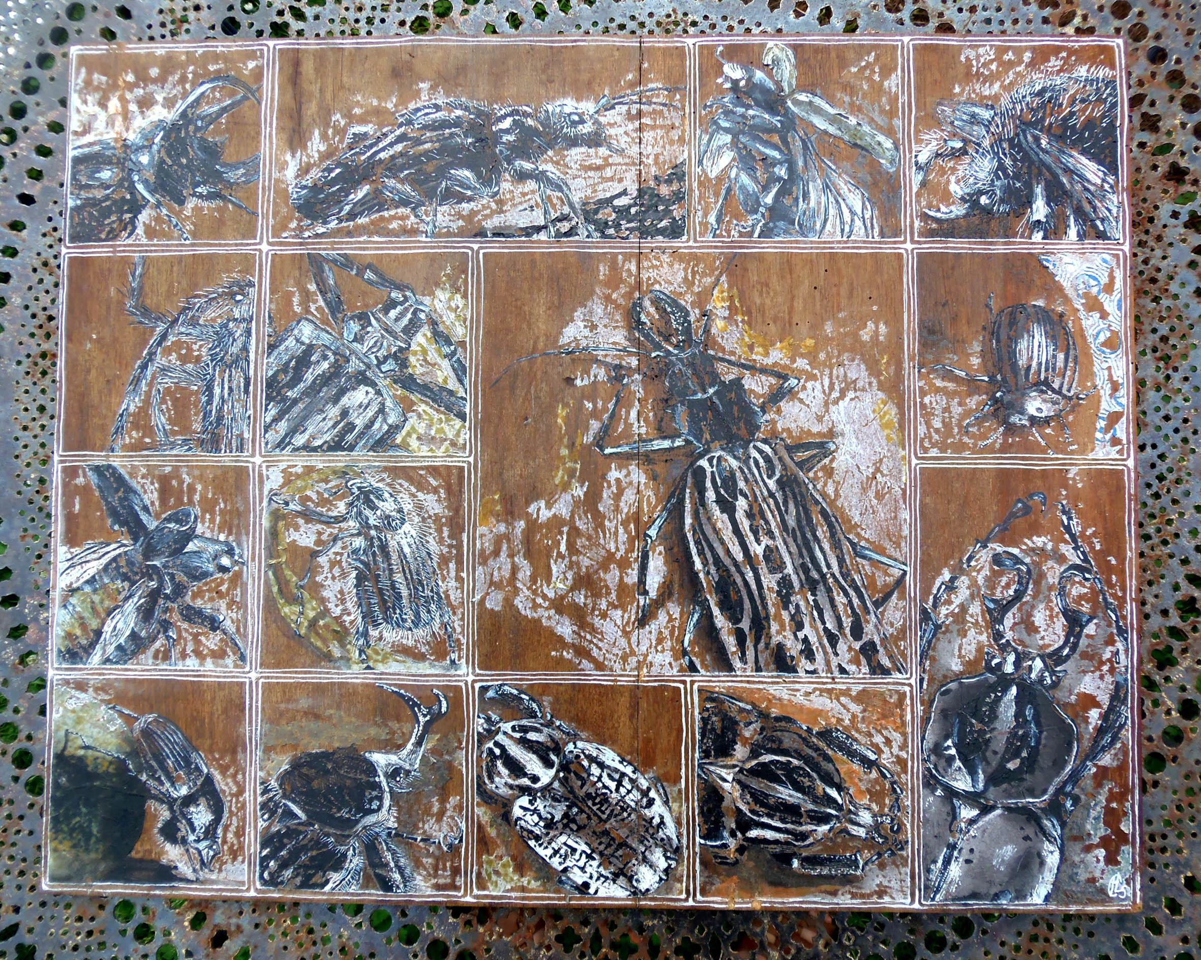 Insectes sur bois
