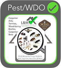 L&M Final Pest WDO Inspection.png