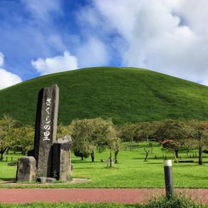 伊豆高原に引っ越しました。