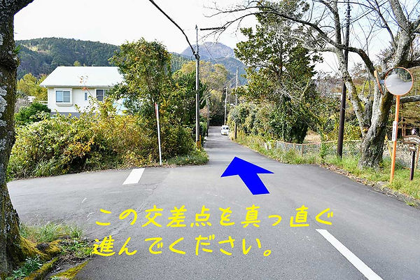 4-DSC_9087.jpg