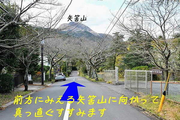 3-DSC_9082.jpg