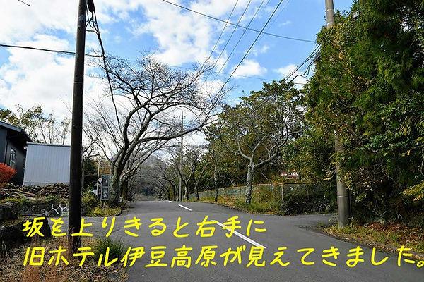 1-DSC_9074.jpg