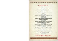 הגדה סולידי A5 פתיחות-17