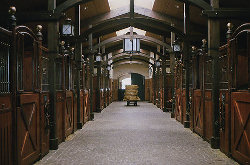 stable with many stalls